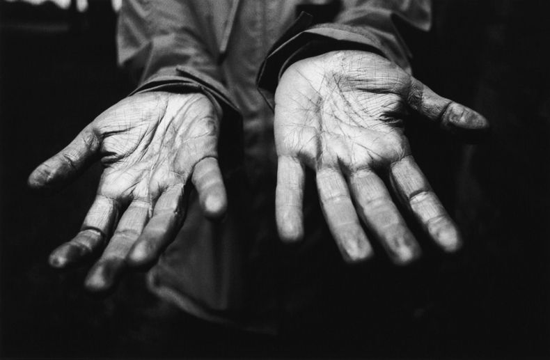 My hands, gilded. Photograph Tom Rodgers 2012.